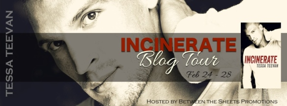 Incinerate Tour Banner