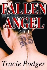 Kindle cover FA2-2